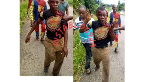 Graphic: Man kills his cousin over mangoes in Abia .
