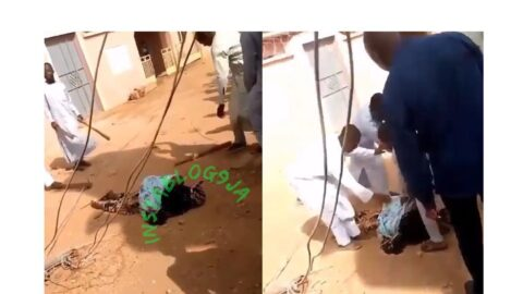 High tension cable kills lady and the child she's backing . .