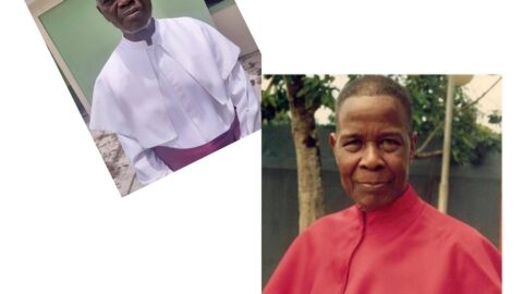 All the troubles from this world are as result of man eating meat and fish – Archbishop Irefin