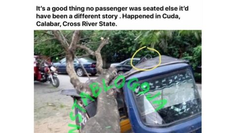Tricyclist walks away unscathed after a tree fell on his tricycle in Cuda, Cross River State