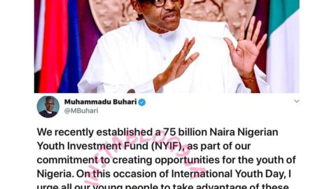 International Youth Day: Take advantage of the N75billion Nigerian Youth Investment Fund