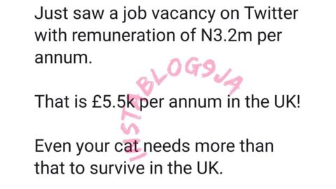 Nigeria is poor. Even your dog needs more than N3.2m per annum to survive in U.K — Author