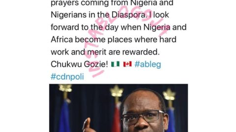 Nigerian-born Canada's first black Justice Minister reveals what he looks forward to in Nigeria
