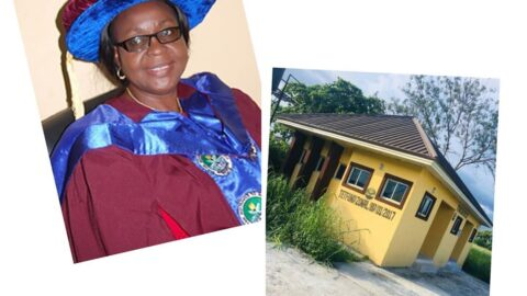 College Provost allegedly uses N36m to build two toilets . .