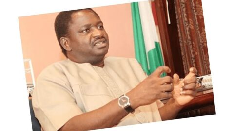 Looting was due to EndSARS protests and not poverty — Pres. Buhari's aide, Femi Adesina
