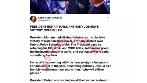 Pres. Buhari hails Anthony Joshua's victory over Pulev
