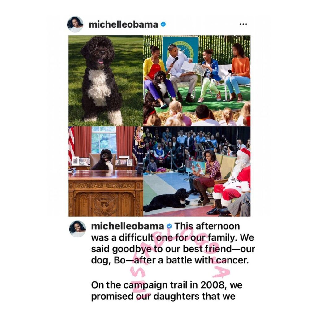 The Obamas announce the passing of their dog [Swip... Image