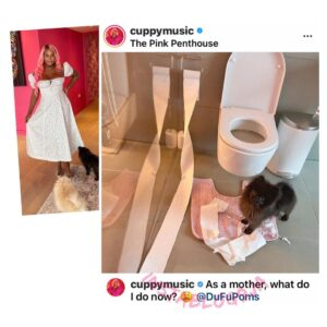 Motherhood: New mom, DJ Cuppy, seek help after her 'child' messed up her toilet