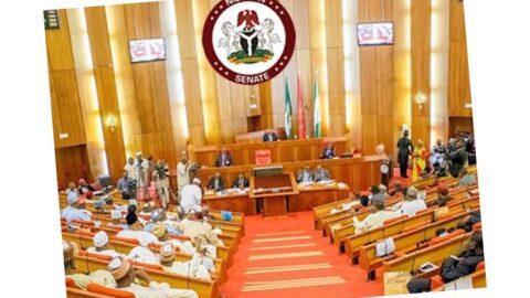 Declare bandits as terr*rists — Nigerian Senate urges President Buhari .